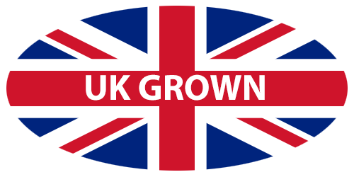uk grown
